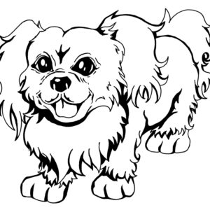 Cartoon Illustration Pet Portrait